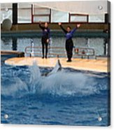 Dolphin Show - National Aquarium In Baltimore Md - 1212278 Acrylic Print