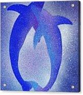 Dolphins 3 Acrylic Print