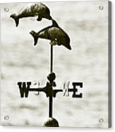 Dolphins Weathervane In Sepia Acrylic Print by Ben and Raisa Gertsberg