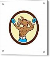 Donkey Boxing Celebrate Circle Cartoon Acrylic Print