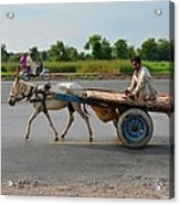 Donkey Cart Driver And Motorcycle On Pakistan Highway Acrylic Print