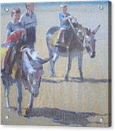 Donkeys At Borth Beach Acrylic Print