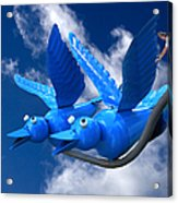 Donna's 1st Blue Bird Flight Acrylic Print