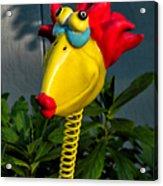 Donna's Bird Says Kiss Me Acrylic Print