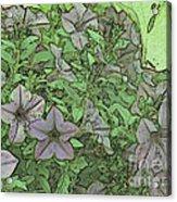 Donovan's  Garden Acrylic Print by Mark Herman