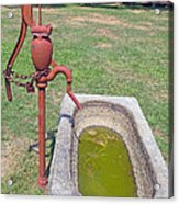 Don't Drink The Water Acrylic Print