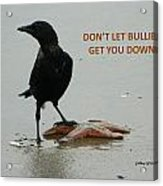 Don't Let Bullies Get You Down Acrylic Print