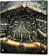 Don't Rock My House - Turtle Acrylic Print
