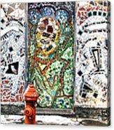 Door Mosaic Acrylic Print
