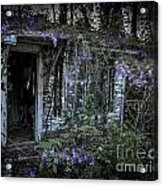 Doorway And Flowers Two Acrylic Print