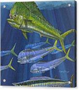 Dorado Rip Off0057 Acrylic Print