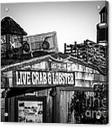 Dory Fishing Fleet Live Crab And Lobster Sign Picture Acrylic Print