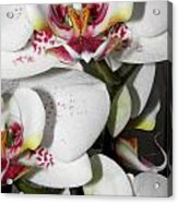 Dots And Splashes Of Pink On Orchid Acrylic Print