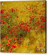 Dots Of Red Acrylic Print