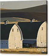 Double Barns Acrylic Print