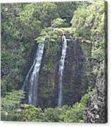 Double Waterfall Acrylic Print