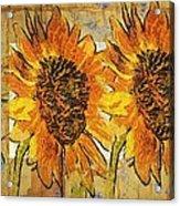 Double Yellowed Acrylic Print