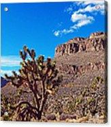 Doubletop Landscape Acrylic Print