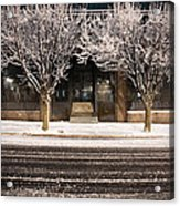 Doubletree Acrylic Print by Scott Moore