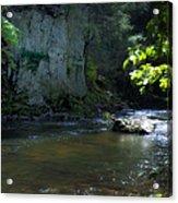 Dowlin Forge Park - Brandywine Creek Acrylic Print