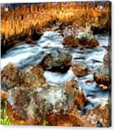 Down By The Brook Acrylic Print