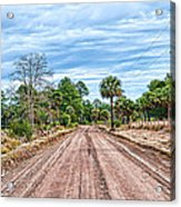 Down Chisolm Island Road Acrylic Print