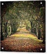 Down The Lane Acrylic Print by Gail Falcon