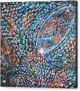 Dragon Insight 6 Acrylic Print