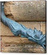 Dragon Waterspout  Chateau De Cormatin Acrylic Print