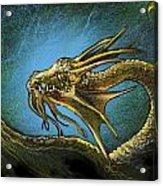 Dragonbliss Acrylic Print by Lynette Yencho