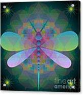Dragonfly 2013 Acrylic Print