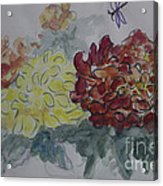 Dragonfly Among Chrysanthemums Acrylic Print