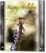 Dragonfly Birthday Card Acrylic Print by Carolyn Marshall