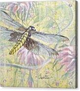 Dragonfly Fantasy Acrylic Print