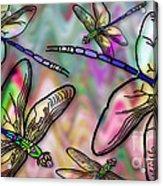 Dragonfly Land Acrylic Print