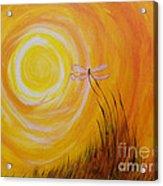 Dragonfly Sun Acrylic Print