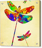 Dragonfly Watercolor Art Acrylic Print