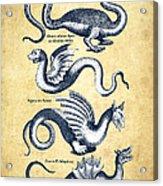 Dragons - Historiae Naturalis  - 1657 - Vintage Acrylic Print