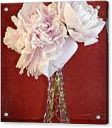 Dramatic Peonies Over Red Acrylic Print