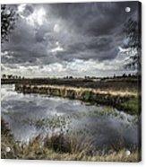 Dramatic Swamp... Acrylic Print by Israel Marino