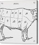 Drawing Of A Bullock Marked To Show Eighteen Different Cuts Of Meat Acrylic Print by English School