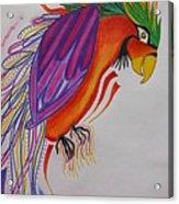 Dream Bird Acrylic Print