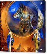 Dream Catcher - Wolf Dreams Acrylic Print