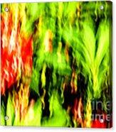 Dream Garden - 252 Acrylic Print