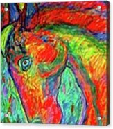 Dream Horse Acrylic Print