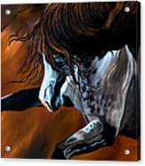 Dream Horse Series 155 - Wild Mustang Pawing The Air Acrylic Print