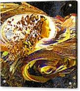 Dream Weaver Acrylic Print