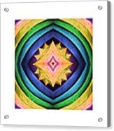Dreamcatcher 3 Acrylic Print