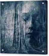 Dreamforest Acrylic Print by Gun Legler