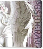 Dreamy Angel Wings Photography - Angel Wings Desiderata Print Home Decor Acrylic Print